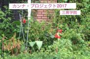 公式カンナ子ども夢プラン里親カンナ - 18 - 広島三育学院