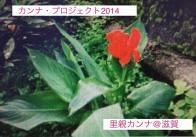 公式カンナ子ども夢プラン里親カンナ - 65 - 滋賀2014