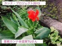 公式カンナ子ども夢プラン里親カンナ - 77 - 滋賀TUさん2013