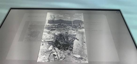 広島原爆資料館 - 7