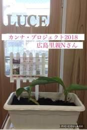 公式カンナ子ども夢プラン里親カンナ - 170 - 2018 - 広島里親Nさん